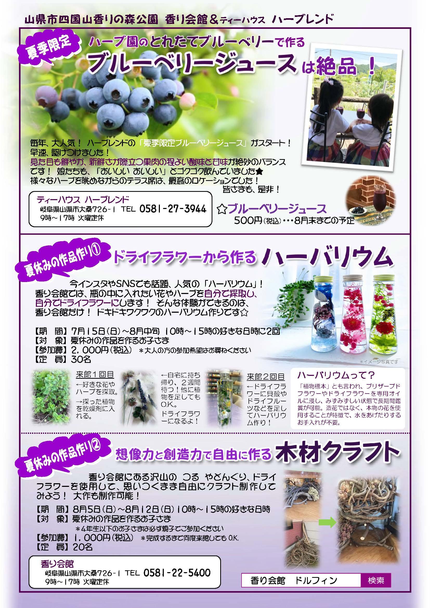 ドルフィン広報誌8月号校了_ページ_5